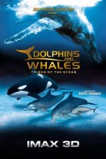 Nonton film Dolphins and Whales 3D: Tribes of the Ocean (2008) terbaru