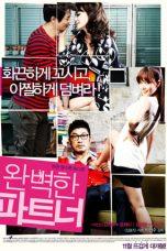 Nonton film Perfect Partner (2011) terbaru